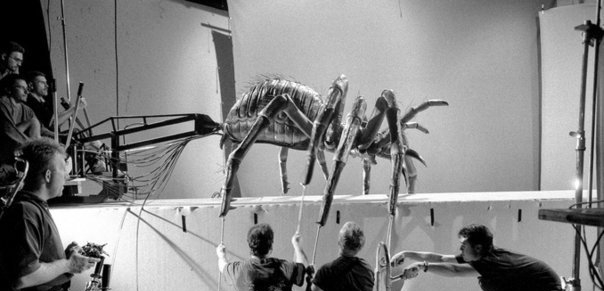 Spiders puppet